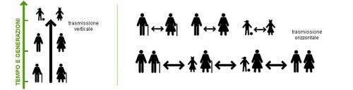 Trasmissione verticale cultura